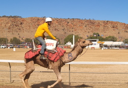 Camel Cup Alice Springs 2007